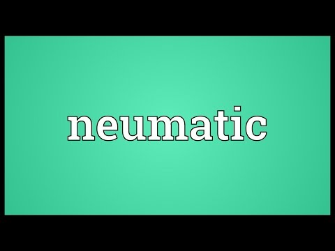 Neumatic Meaning