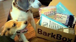 BarkBox September 2014 Unboxing & Dog Testing