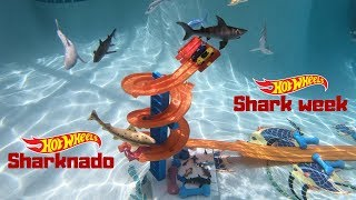 Hot Wheels shark week sharknado corvettes vs sport cars tournament race