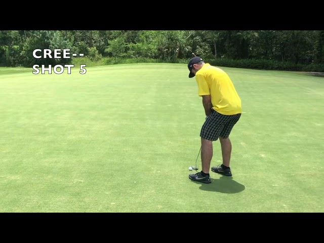 2019 Golf Is Great Submission | The Average Golfers Trophy Round