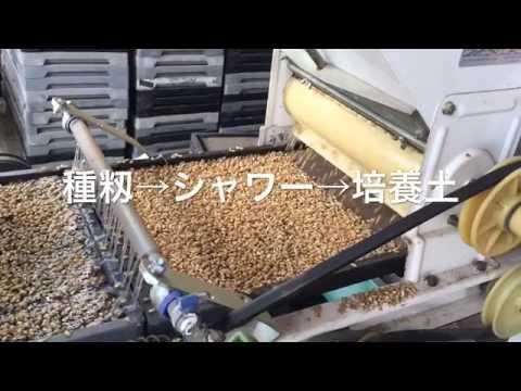 苗床マシーン 手動の苗床マシーンにモーターや減速機を取り付けました。