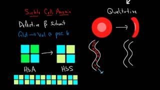 Hemoglobin and Hemoglobinopathies