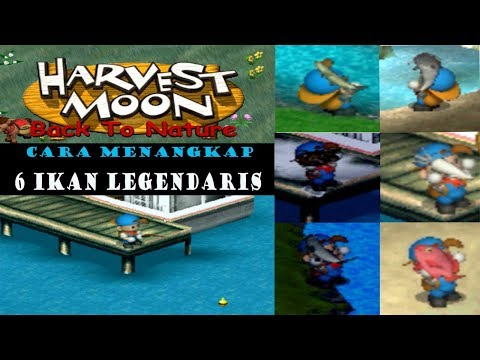 Cara Menangkap 6 Ikan Legendaris Di Harvest Moon Back To Nature