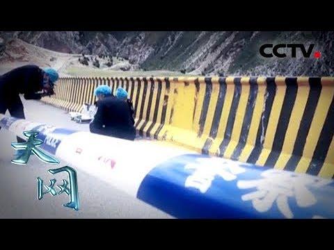 《天网》油漆下的秘密:大桥上的血迹为何被人用油漆刻意覆盖?  CCTV社会与法