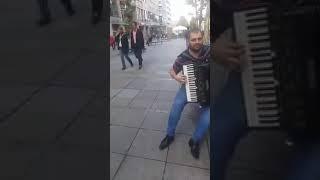 ceva frumoas la acordeon