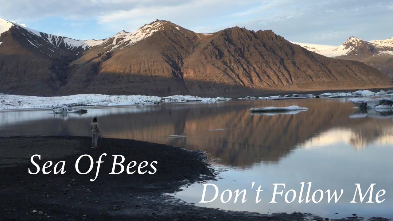 Sea of bees wizbot рингтон скачать