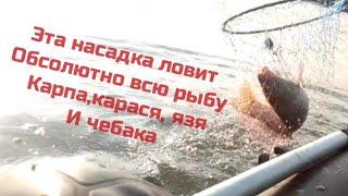 рыбалка на озере чаны бешеный клев карп карась язь и плотва на эту универсальную насадку
