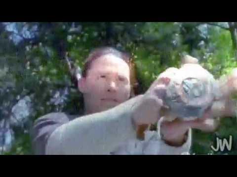 Return to Angel Grove | Mighty Morphin [VID #164]