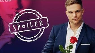 Bachelor 2020 Finale: Die Top 2 & die Gewinnerin