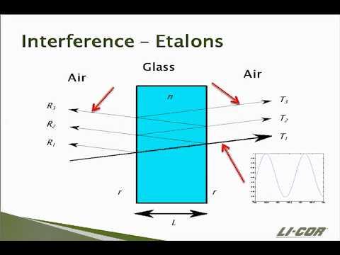 Ecosystem Flux: Measuring Principles of the LI-7700 Trace Gas Analyzer