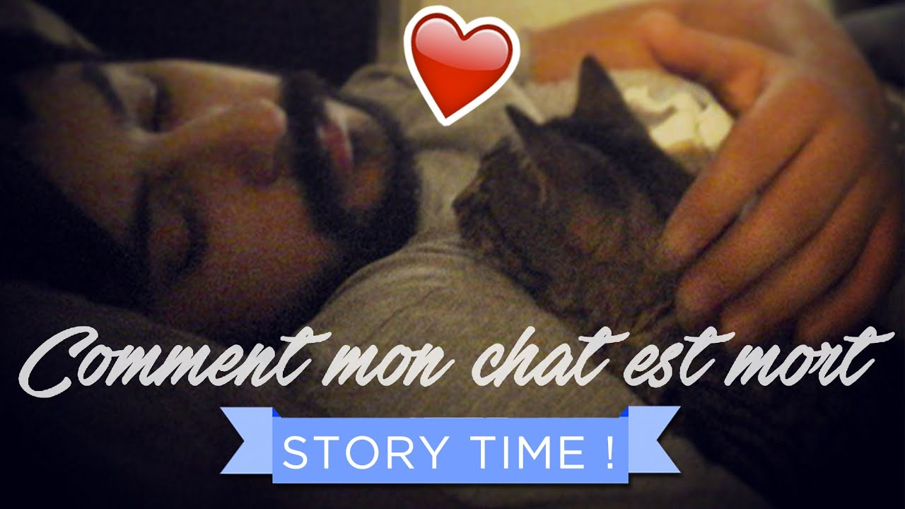 story time comment mon chat est mort cr pe au citron youtube. Black Bedroom Furniture Sets. Home Design Ideas