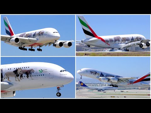 [4K] EMIRATES AIRBUS A380-861 LAX ARRIVAL & DEPARTURE - PLANE SPOTTING - JUNE 2019