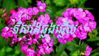 phi vong year new - song new york new york - song new indian - khmer love song cambodia