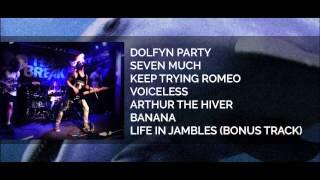 F.Y.N - Dolfyn Party