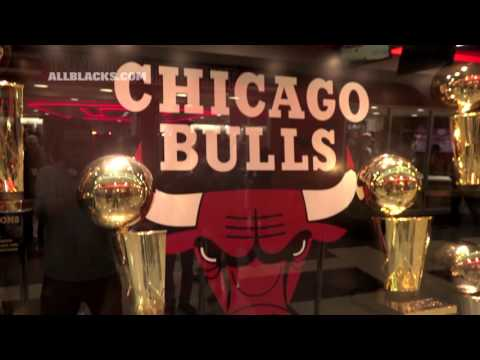 All Blacks Experience The Chicago Bulls