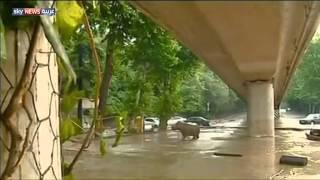 هروب الحيوانات من حديقة بجورجيا إثر فيضانات   14-6-2015