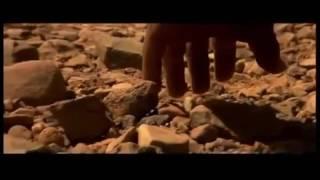 Армянский дудук Саундтрек к ф Гладиатор