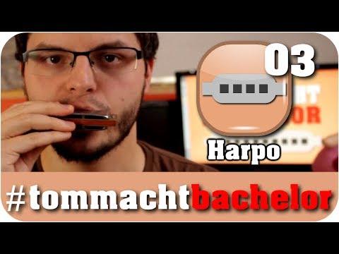 Die Gliederung - #03 - Tom macht Bachelor
