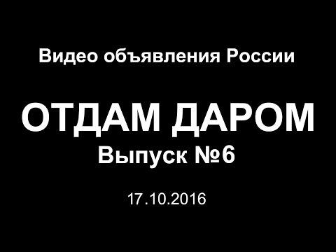 Отдам даром. Выпуск №6 (17.10.2016) - Видео объявления России
