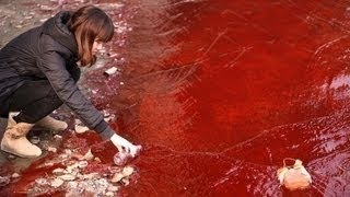 World WATERS TURN BLOOD Apocalypse - Australia DUST STORM, FIRE; Russia COLD; China 1.19.13