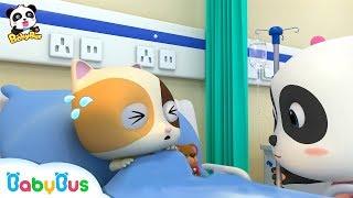 *NEW*키키묘묘 꼬마 간호사|입원 싫어하는 아기 고양이 티미|의사놀이|베이비버스 인기동요 모음|BabyBus