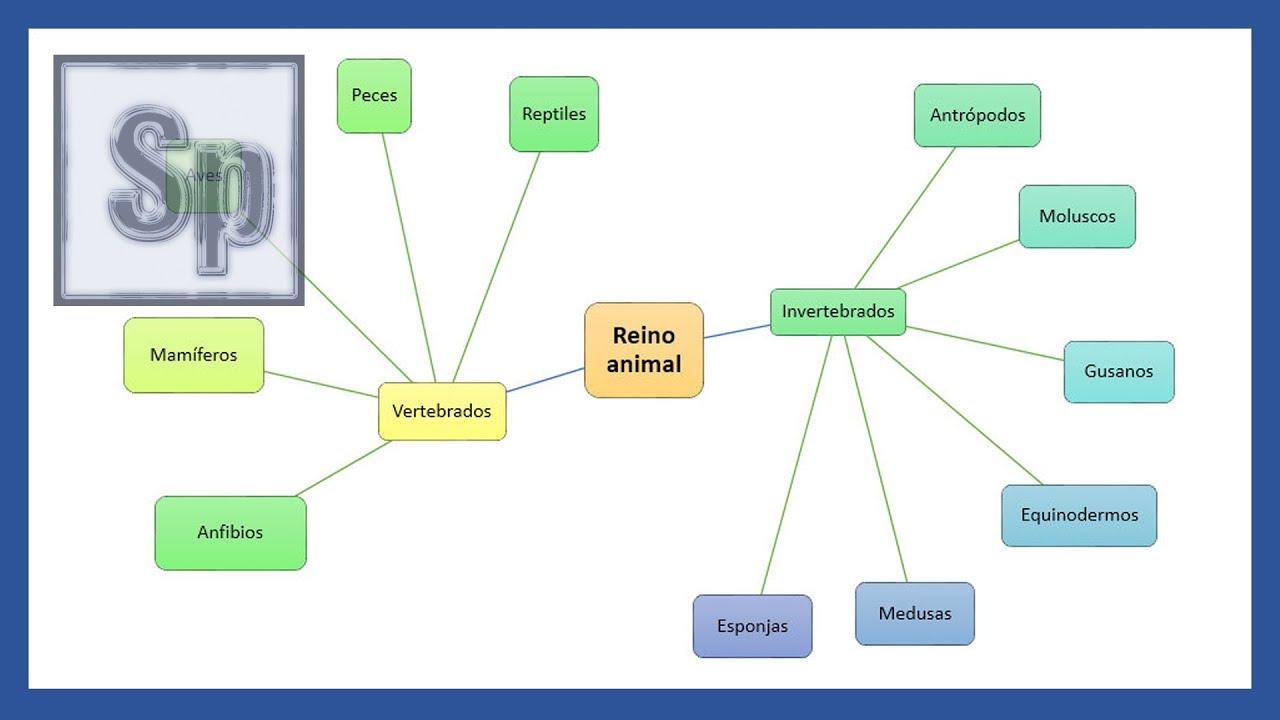 Word Crear Un Mapa Mental Brainstorming En Word Tutorial En Español Hd