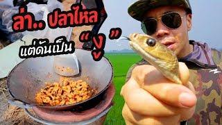 ล่าปลาไหล-แต่ดันเจอ-งู-18-หัวครัวทัวร์ริ่ง-ep-24