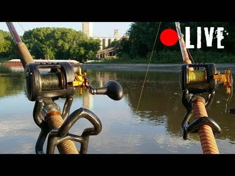 NEW Catfish Rod!!! from YouTube · High Definition · Duration:  7 minutes 58 seconds  · 822 views · uploaded on 11/25/2017 · uploaded by FV-Catfish.com