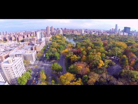 Central Park Aerial View (Manhattan, New York)