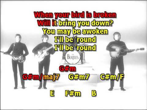 and-your-bird-can-sing-beatles-mizo-vocals-lyrics-chords-cover