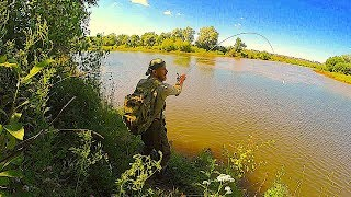 Рыбалка. Лёгкий Спиннинг на Реке. Окунь, Щучка, Жерешок. Залог успеха в жару(размер приманки)