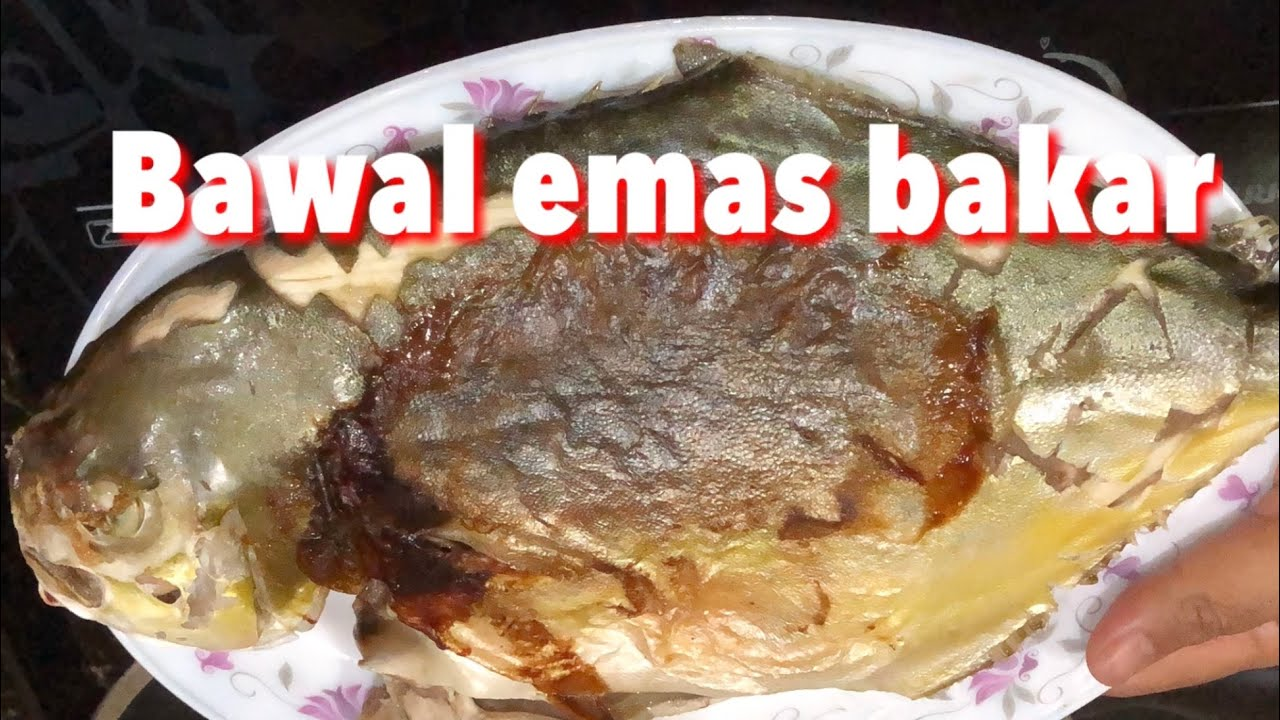 memasak resepi memasak ikan bakar bawal emas  mudah  sedap street food  malaysia Resepi Ikan Pari Bakar Melaka Enak dan Mudah