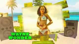 Dancehall Reggae Anthems: The Album - TV Ad