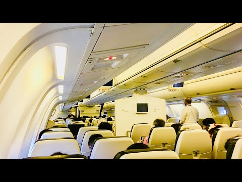 TRIP REPORT | British Airways | London Heathrow T5 - Larnaca | 767-336ER | Economy Class (ET) ✈️