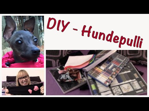 DIY - Einfacher Hundepullover | Home Made | Hundekanal - YouTube