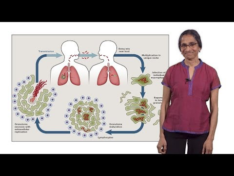 Lalita Ramakrishnan (Cambridge) 1: Tuberculosis: The Pathogenic Personality of the Tubercle bacillus