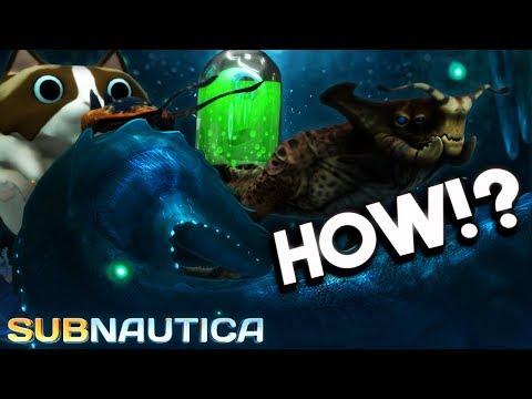Subnautica - A Gargantuan Arctic Leviathan REVEALED!? NEW ITEMS & Arctic DLC Info - Full Release 1.0