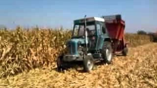 Berba kukuruza 2011 Vladimirci