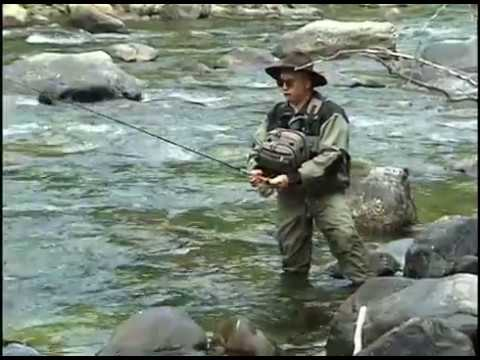 Poudre River CO Fly Fishing for Trout