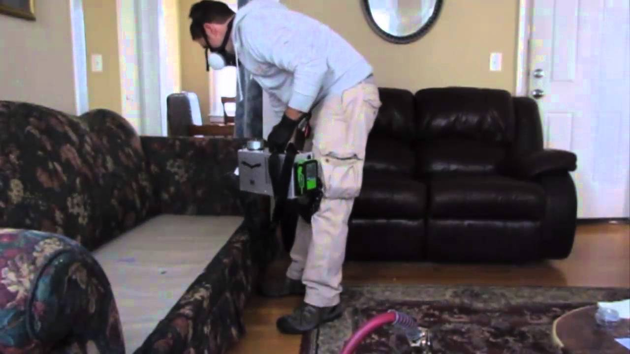 Bed Bug Bully Reviews >> Bed Bug Elimination Bug Bully Pest Control Grafton Ma
