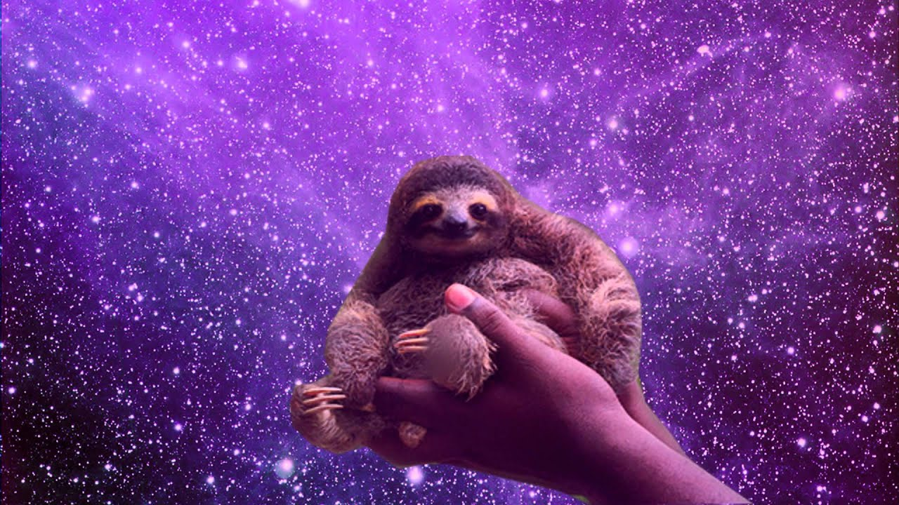 Sloths in Space - YouTube