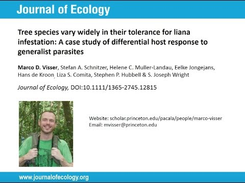 Marco Visser - Influences of Lianas on Tropical Tree Populations