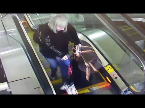 Dog Owner Panics After Pup's Paw Gets Caught in Escalator