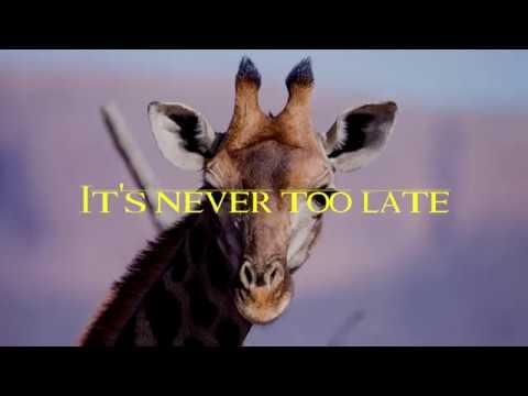 Elton John - Never Too Late (lyrics) #1