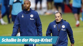 Schalke in der Krise: Baum ist nicht der Alleinschuldige!