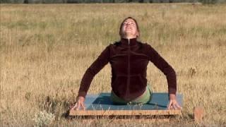Perk Up Your Posture · Desk Warrior Yoga