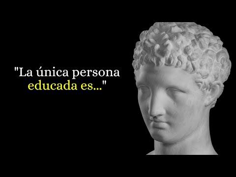 Las 100 Mejores Frases De Educación Con Imágenes Lifeder