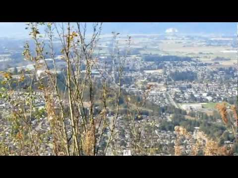 Mount Thom View