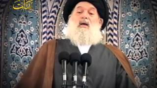 إنجازات الثورة الإسلامية في إيران - السيد فضل الله(رض)
