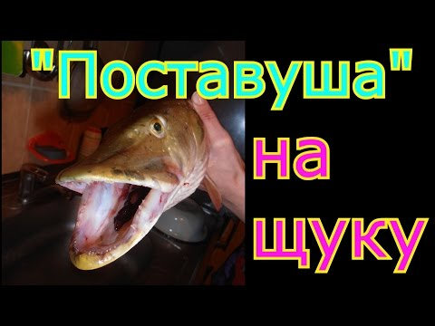 как изготовить жерлицу для ловли рыбы